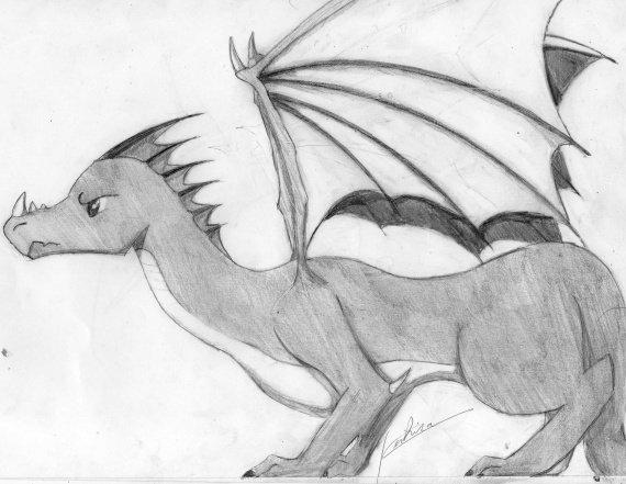 Dragon Scan