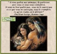 belle-citation américo latine