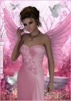 belle image rose