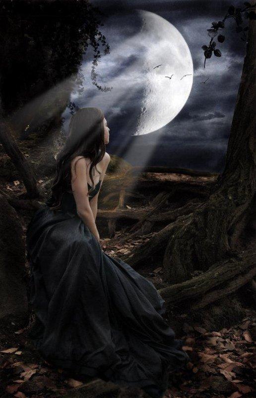 jf dans une forêt la nuit