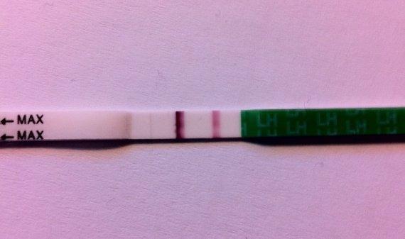 Test ovulation J14 - 03/01/2011