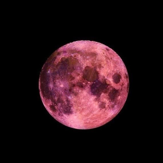 lune rose 1