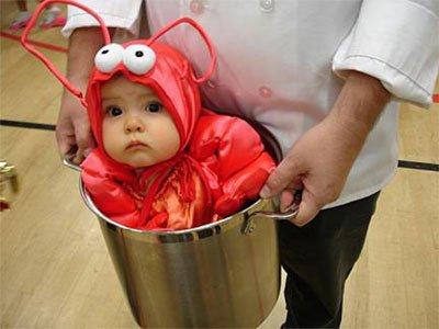 Halloween Bebe le top des 10 costumes halloween pour bebe - doctissimo - doctissimo