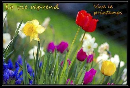 blog-34412-vivement-le-printemps-070311090549-868831393