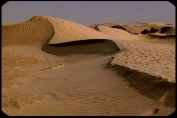 desert-111