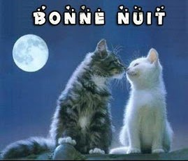 bonne_nuit_joliecarte1