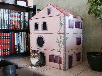 cat-home-chat-maison-tout-carton-etes-fan-cartonnage-montrez-creations_29415