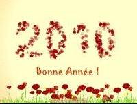 bonne_annee_coccinelle_th