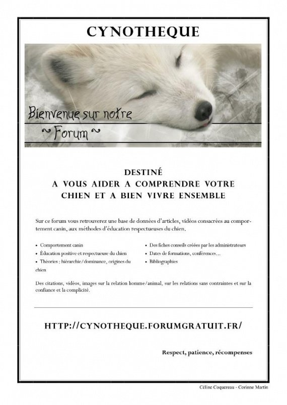 CYNOTHEQUE comprendre son chien