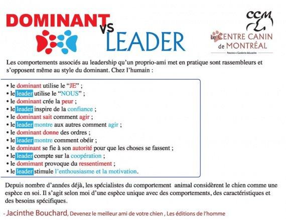 dominant ou leader
