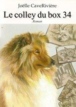 le colley du box 34 de Joëlle Caverivière