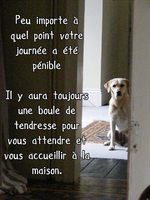 tendresse inconditionnelle