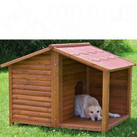 cabane chiens