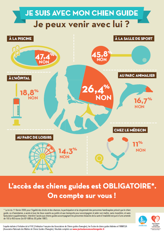 chiens guide