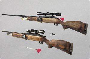 dan-inject-co2-injection-rifle-model-i-m_3_l
