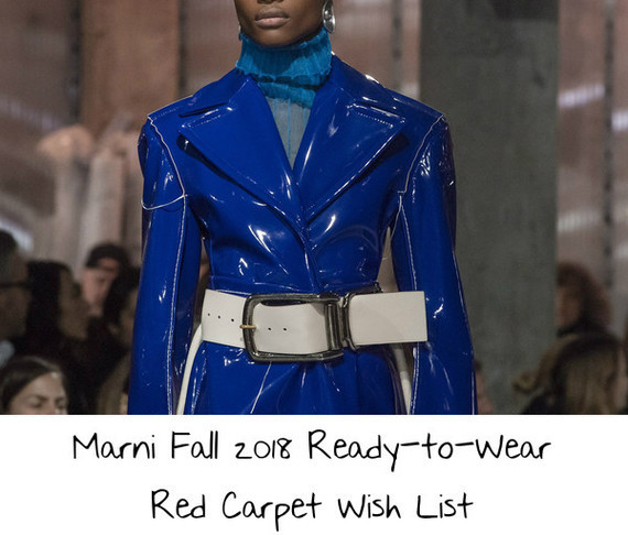 marni-fall-2018-ready-to-wear-red-carpet-wish-list-1
