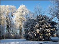 automne hiver 2009/2010