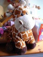 girafe 3e