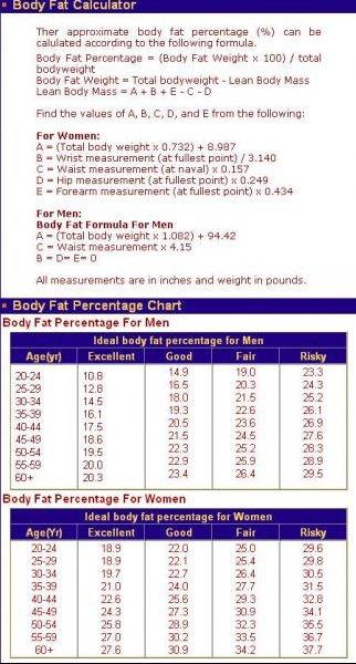 Taux de masse grasse pour une fille cardiotraining for Masse graisseuse