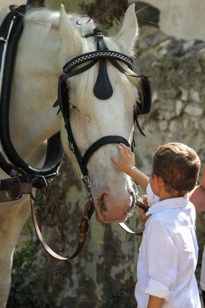 Thème de décembre : les chevaux et les enfants Mariage-20120912163034-fd0b4c68-img