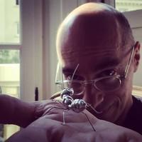 Bernard WERBER et la fourmis en or