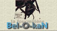 La fourmilière de Bel-O-Kan