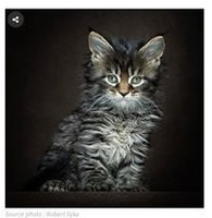 81725639_2753829741326862_1692999026305138688_n-jpg__nc_cat=111&_nc_ohc=7hGRid5QjNcAX_epCLm&_nc_ht=s