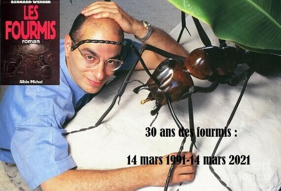 30 ans des fourmis