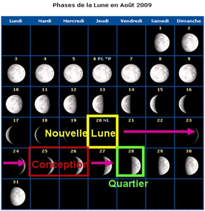Jeux Prédiction Sexe Bb Par La Lune Echographie Forum