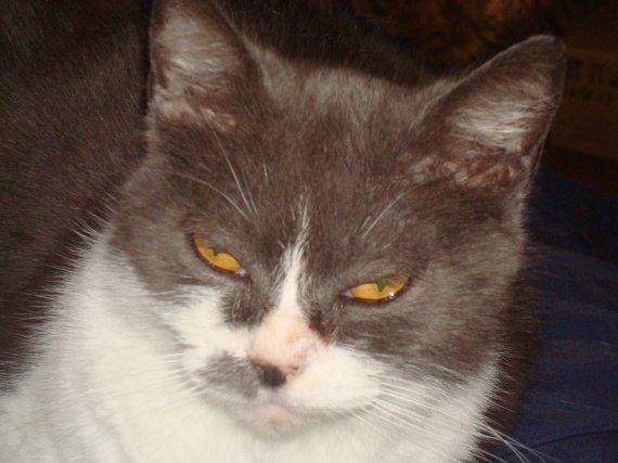 poupounette et son fichu caractère (15 ans )