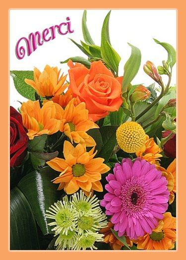 merci-fleurs