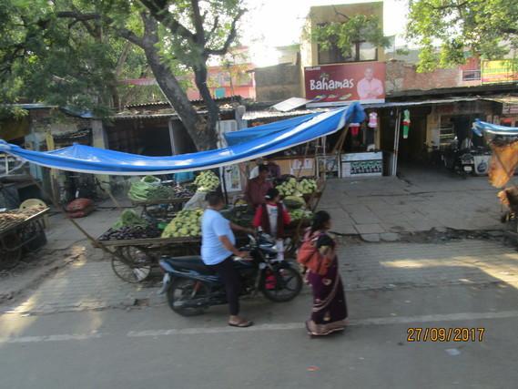 Inde 505