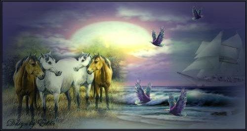 chevaux.jpg2.