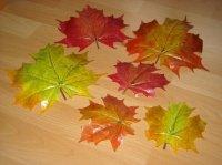 feuilles pour déco table a vendre