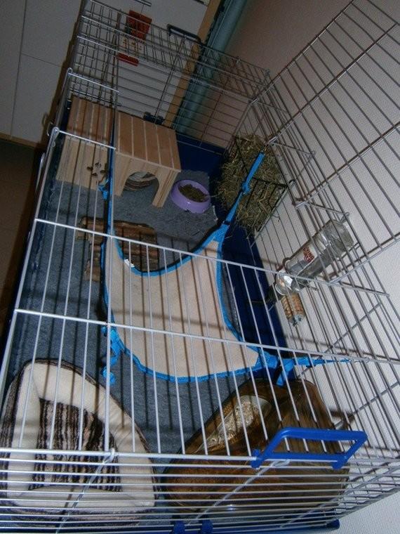 La cage avec dry bed + tout plein d'accessoires ^^