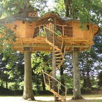 cabanes-dans-les-arbres-bretagne-les-ormes