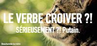Croiver