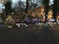 George's garden Decembre 2017
