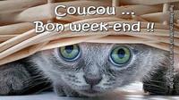 bon-week-end_011