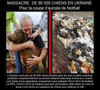 Chiens Ukraine