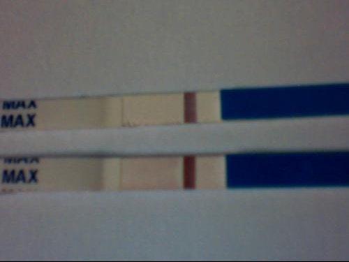 test grossesse bandelette
