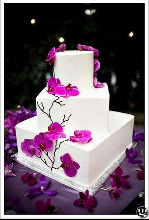 white_cake_14_m-1144382442f