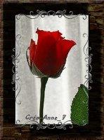 roseanne2