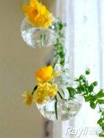 fleurs_jaunes_vase