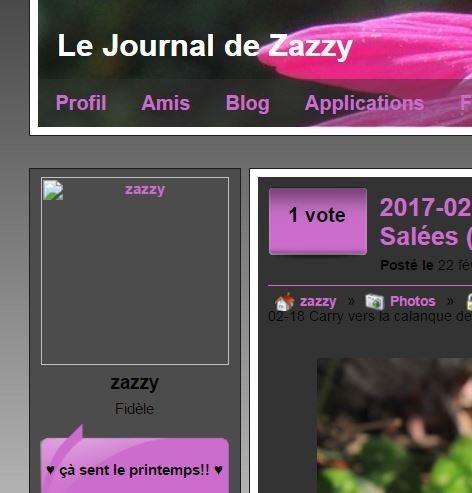 Zazzy-sans
