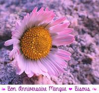 anniv Mangue 23dec17