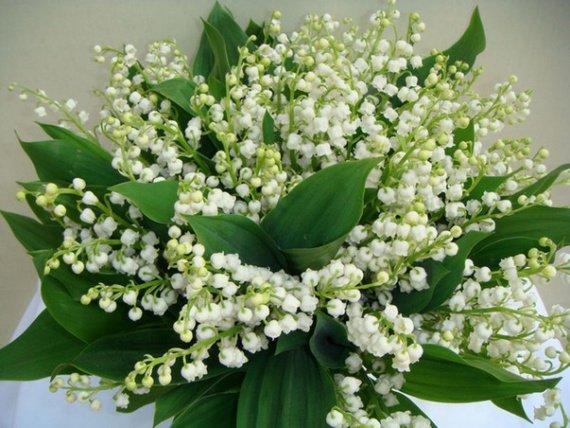 Bon Lundi Forum-bouquet-muguet-img