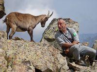 faune-du-mercantour-patagon_010