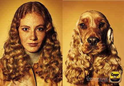 09-Je-ressemble-a-mon-chien_004