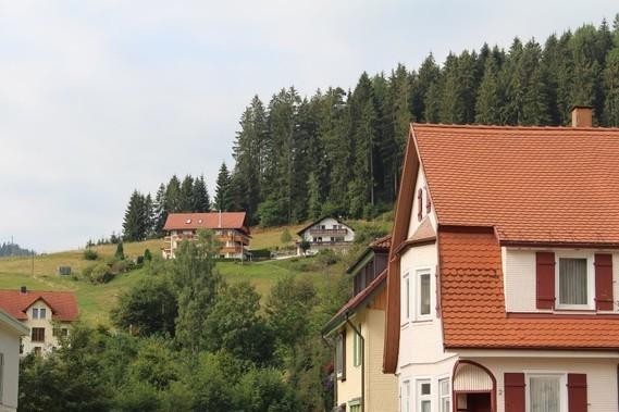 Mitteltal (19)
